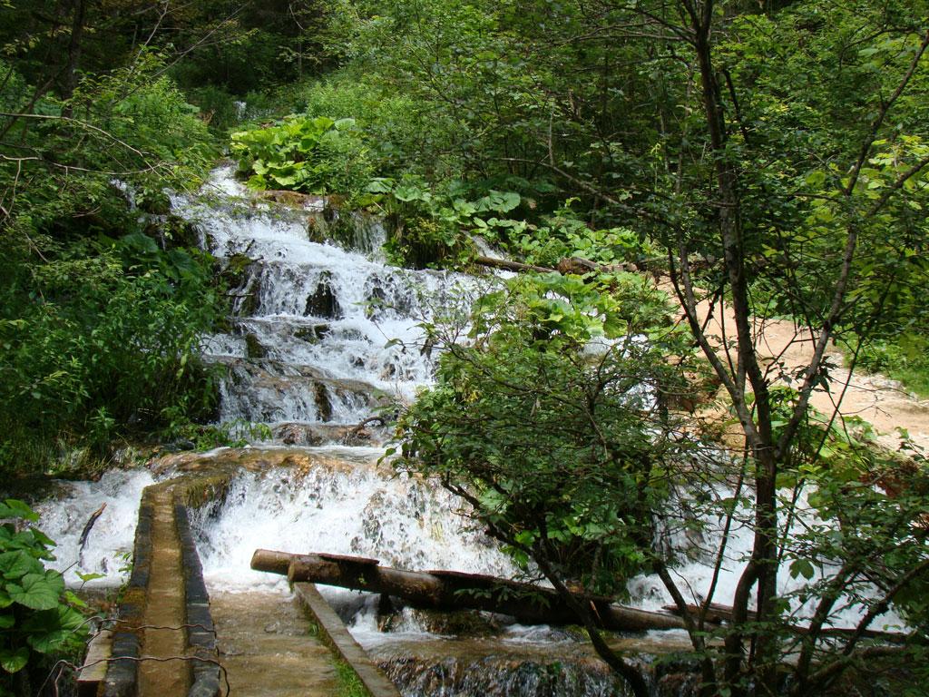 Spre pestera Poarta lui Ionele, obiective turistice Valea Ariesului