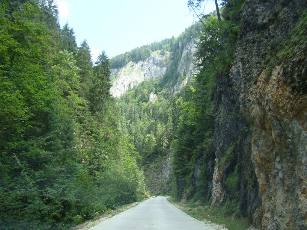 Valea Ordincusii spre Ghetarul de la Scarisoara, atractii turistice Valea Ariesului